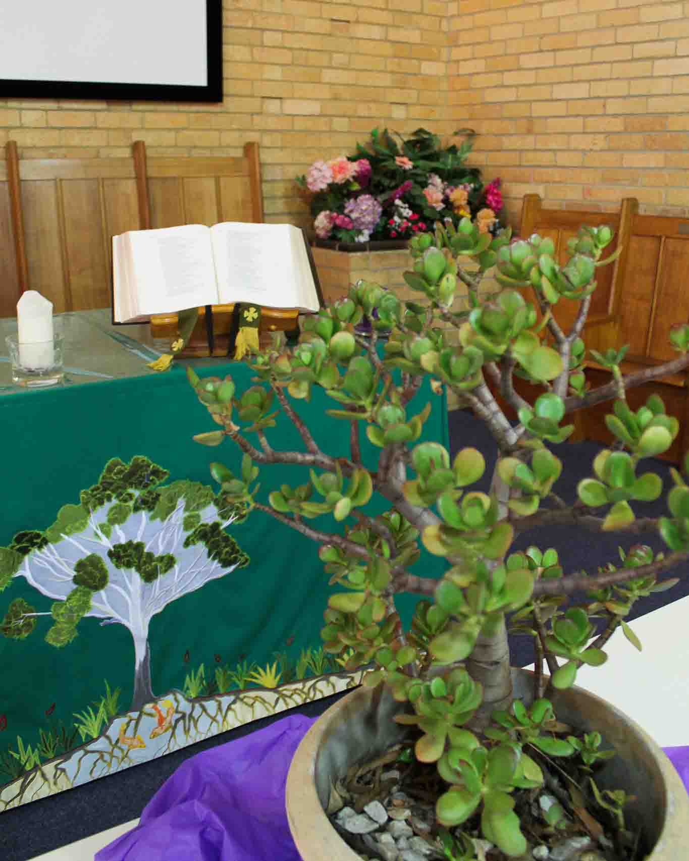 Coburg Uniting Church Melbourne Our Beliefs image: church altar in the background, green plant in the foreground